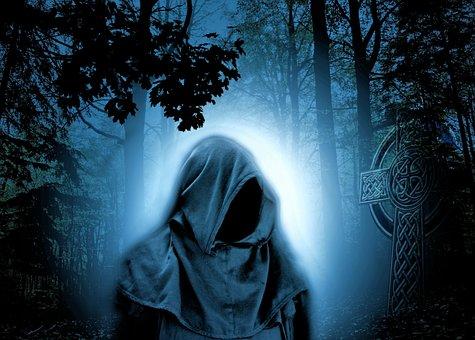 Floresta, Mágico, Noite, Atmosfera