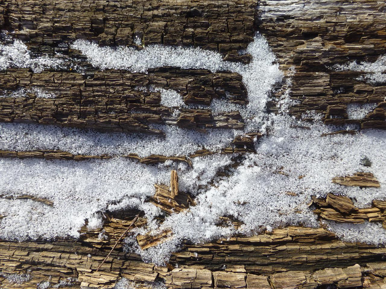 артиста стена снега картинки организациях