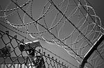 barbed wire, video camera, monitoring