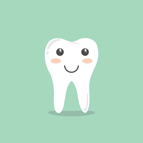 Teeth, Cartoon, Hygiene, Cleaning