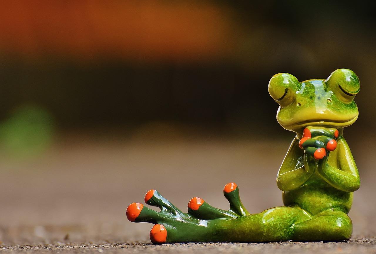 Смешная лягушка в картинках, приколы картинках
