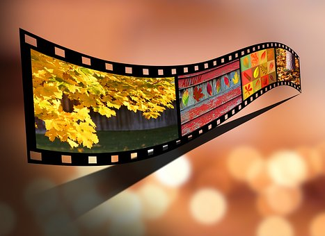 Fall, Autumn, Seasonal, Movie, Reel