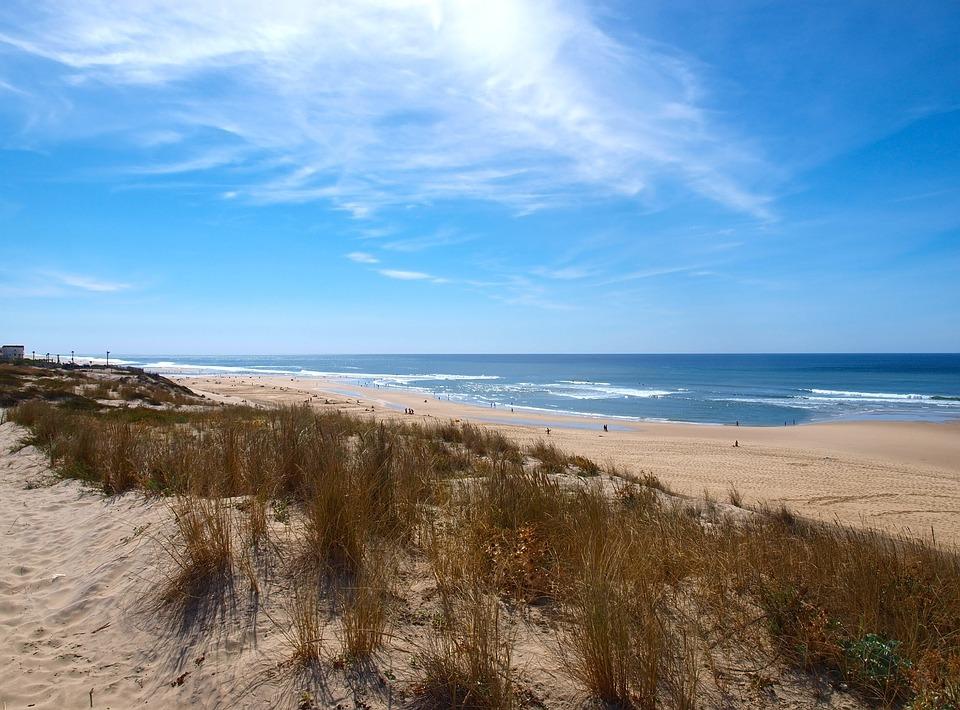 Photo Gratuite Plage Dunes Ocean Bord De Mer Image