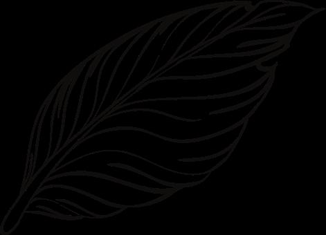 400 Free Pen Pencil Vectors Pixabay