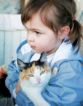 Girl, Cat, Child, Animal, Hug