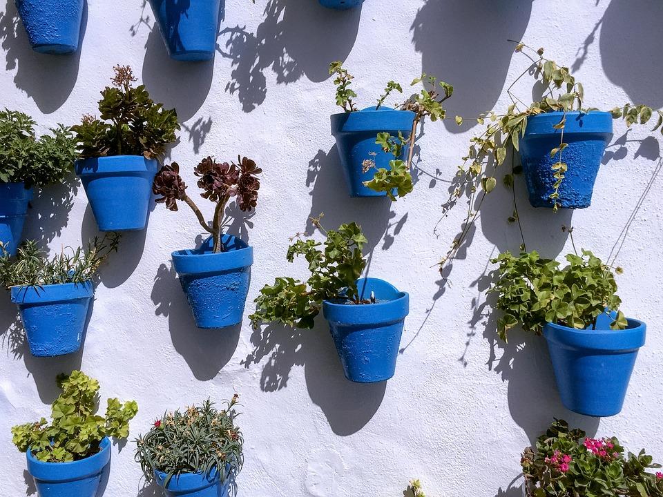 Photo Gratuite Pots Bleu Mur Patron Fleur Image