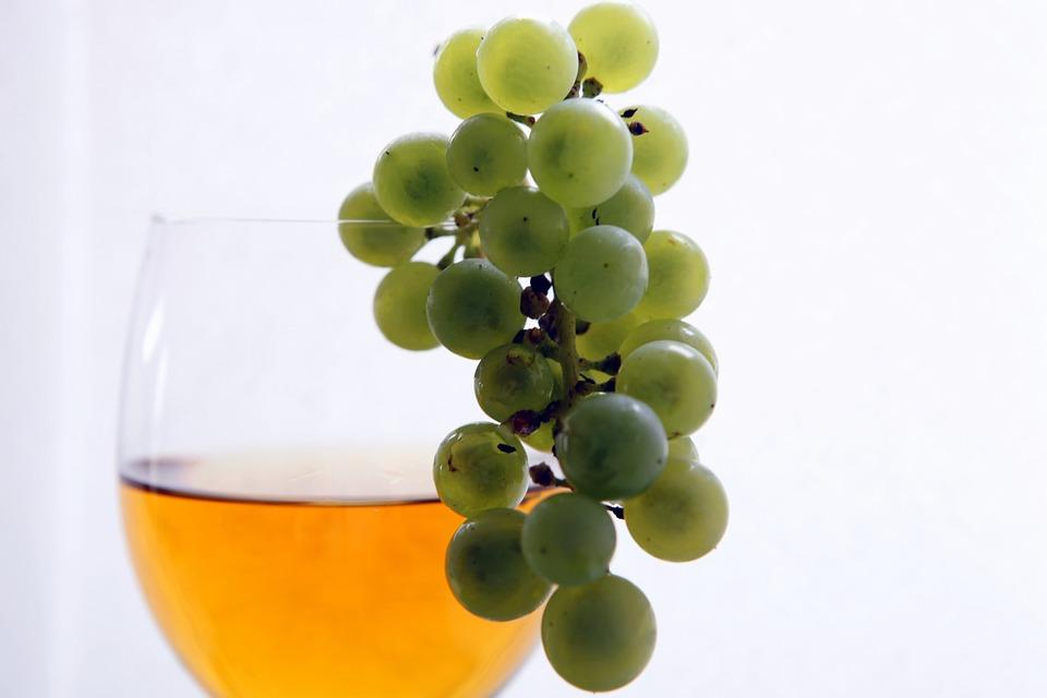 Vin, Vintage, Vignes, Aliments Sains, Naturel
