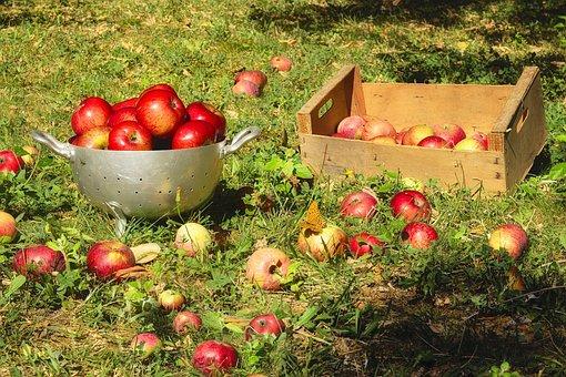compote de pommes framboises de la ferme de l harpin
