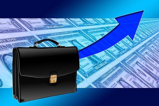 Briefcase, Success, Curve, Dollar