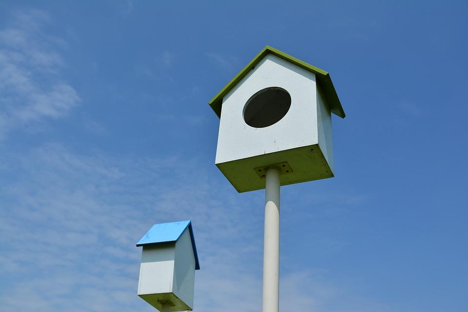 Vogelkooi In Huis : Iedere vogel een eigen vogelkooi westwing