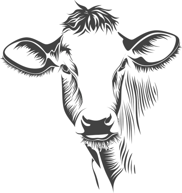 Free illustration: Head, Cow, Cattle, Animal, Farm - Free ...
