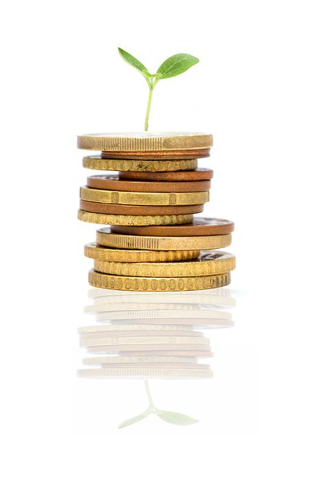 Startup, Rostoucí, Rostlin, Myšlenka, Investice, Peníze