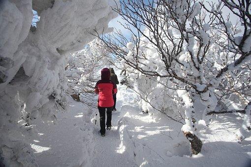 Winter-kou