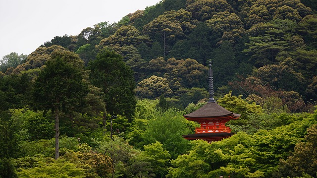 Free Photo Kyoto The Scenery Temple Asia Free Image