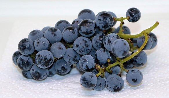 Bilder Blaue Weintrauben ~  Bilder  Fotos, Illustrationen, Vektorgrafiken Blaue, Trauben