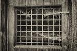 window, grid, door