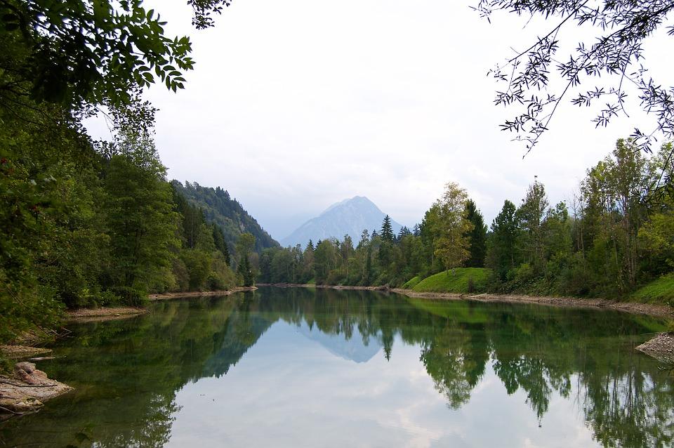 Foret riveraine