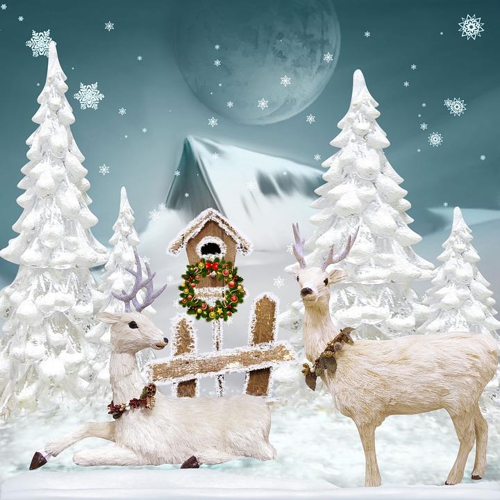 weihnachten advent gruss kostenloses bild auf pixabay. Black Bedroom Furniture Sets. Home Design Ideas