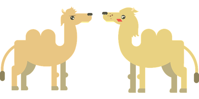 https://cdn.pixabay.com/photo/2016/09/25/14/00/camel-1693753__340.png
