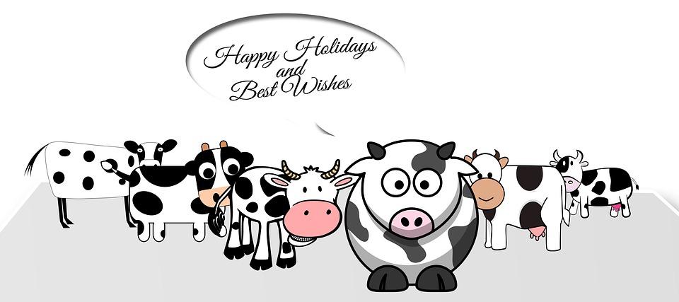 Ironische Weihnachtsgrüße.Weihnachten Kühe Karikatur Kostenloses Bild Auf Pixabay