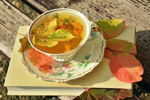 Tee, Tekopp, Höst, Hösten