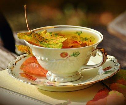 ティー, 茶碗, 秋, 秋の色, 秋を葉します, 食器, ビルド, 庭, 磁器