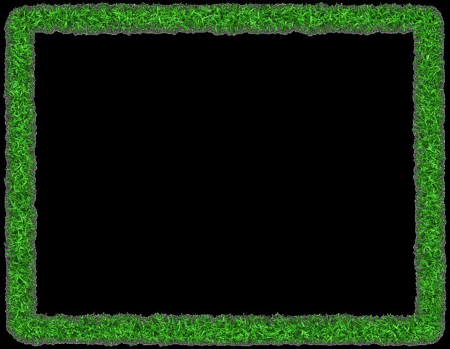 Marco De Fotos Verde Herbario · Imagen gratis en Pixabay