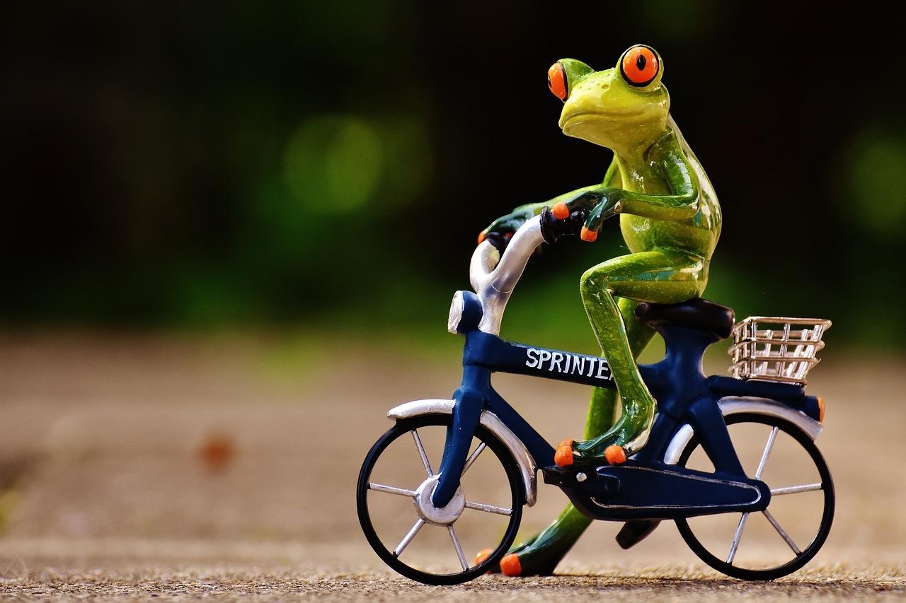 картинки велосипед смешные некоторых северных