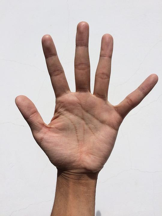 手のひら、手、指、漂白、手相占い、若い
