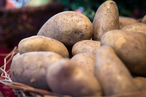 ジャガイモ, 野菜, 感謝祭, 収穫, 茶色, Erdfrucht, 市場