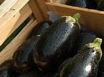 bakłażan, rynku, warzywa