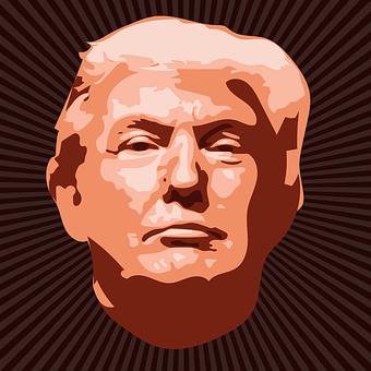 Atout De Donald, Homme Politique