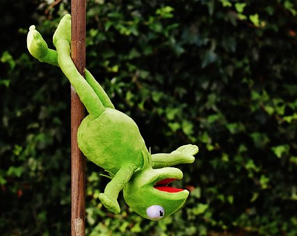 Pole Dance Kermit Funny Soft Toy Animal To