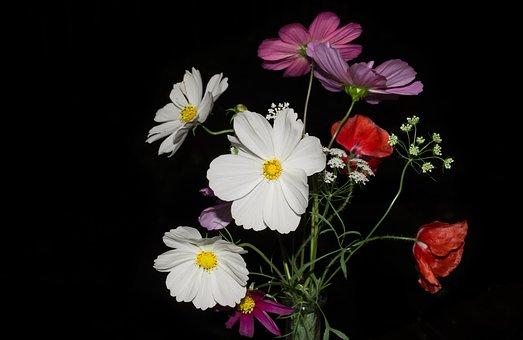 le bouquet de fleurs sauvages images gratuites sur pixabay. Black Bedroom Furniture Sets. Home Design Ideas