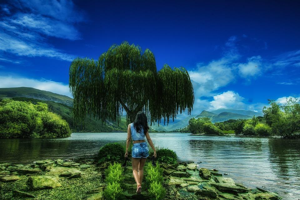 Background Wallpaper Girl Nature Silence