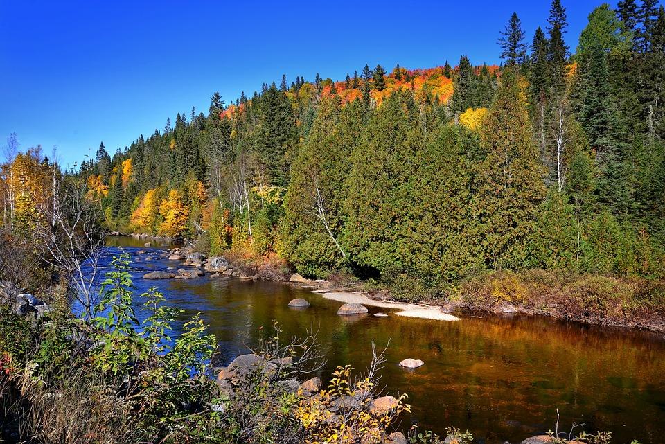 Photo gratuite paysage d 39 automne automne rivi re - Photo d automne gratuite ...