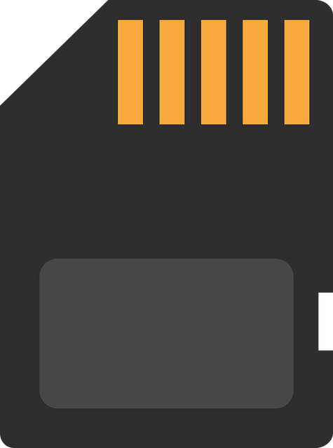 free vector graphic  memory card  chip  sd card  storage - free image on pixabay