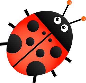 ladybug images pixabay download free pictures