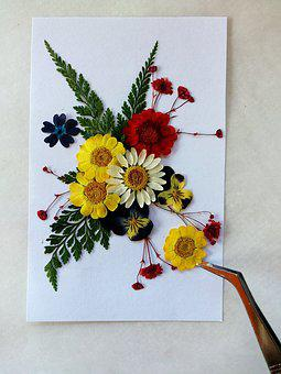 Pressed Flowers, Colorful, Dry Flowers