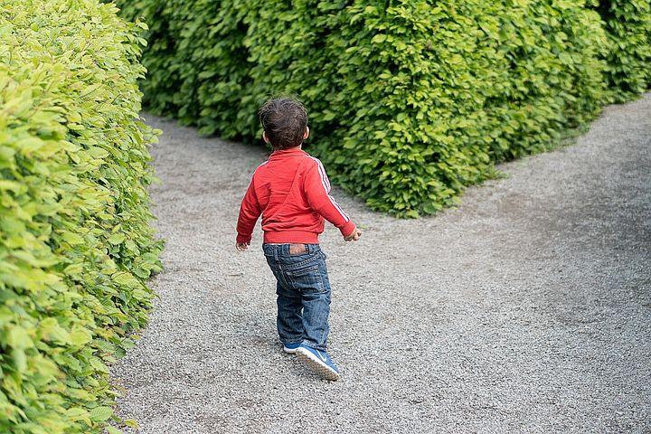 Child, Crossroad, Kid, Choice, Direction