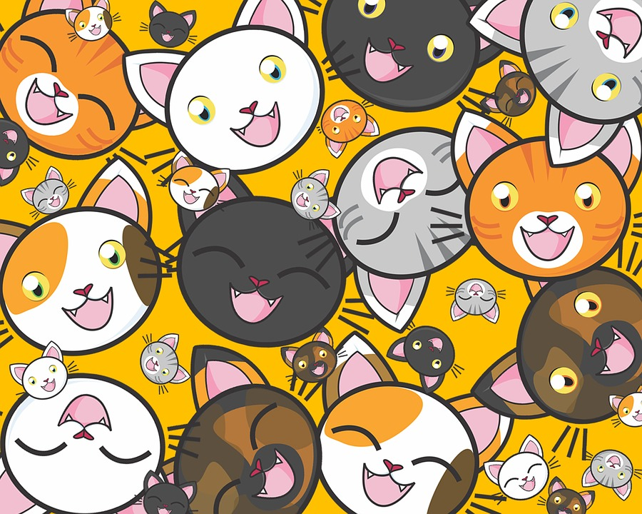 Gambar Kucing Lucu Untuk Wallpaper godean.web.id