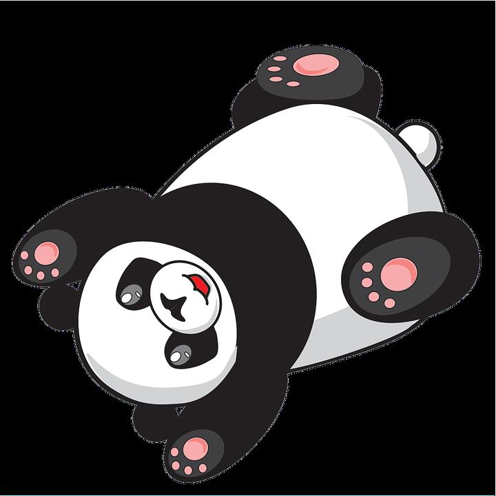 Download 75  Gambar Animasi Kartun Panda  Terbaru