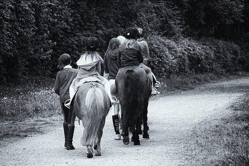 Promenade, Horses, Riders, Ponies