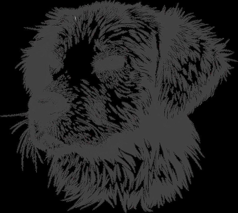 Грустный щенок | Бесплатно векторы