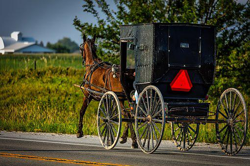 Amish, Iowa, Horse, Buggy, Carriage