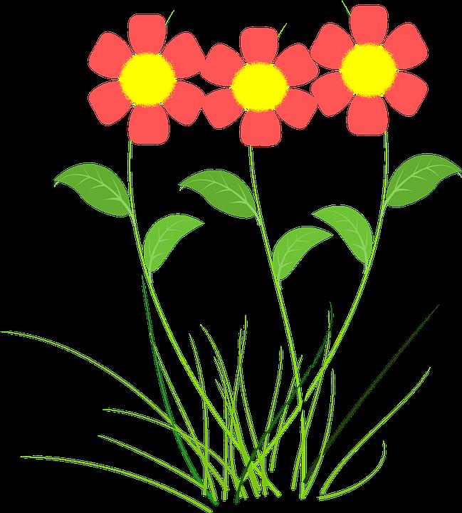Fleur rose plantes dessin image gratuite sur pixabay - Fleur rose dessin ...