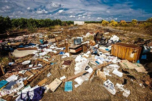 Trash, Abandonment, Shit, Trash, Trash