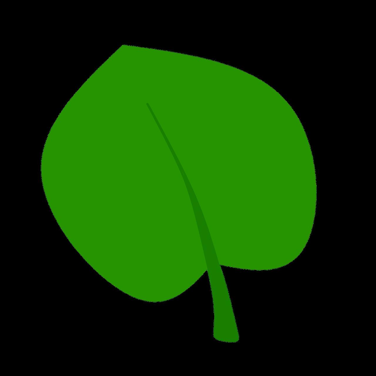 картинка с листочками зеленые