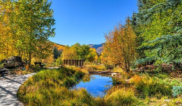 Vail, Colorado, Pond, Foliage, Fall, Sky