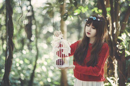 Girl, Cage, Female, Fashion, Style